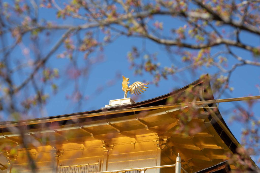 Kinkaku-ji (Golden Pavilion), Kyoto
