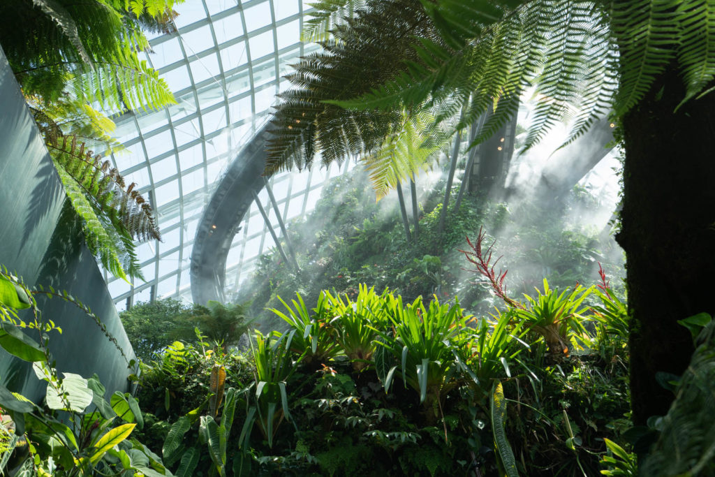 misting, Cloud Forest, Gardens By The Bay, Singapore