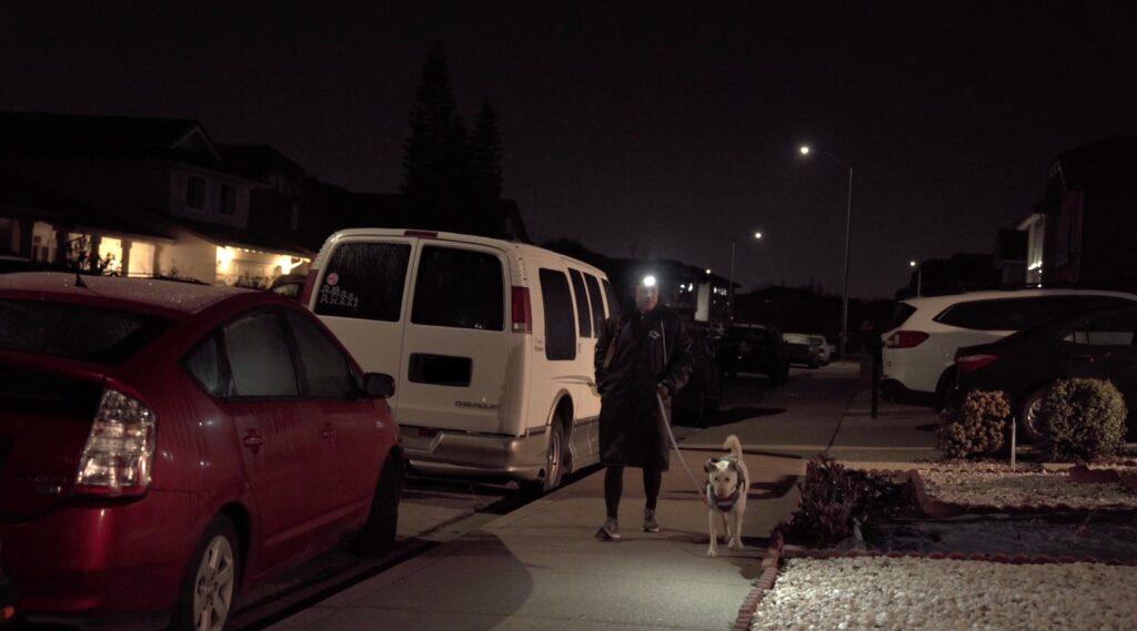 Dog walking in the dark with the Petzl Actik Core Headlamp