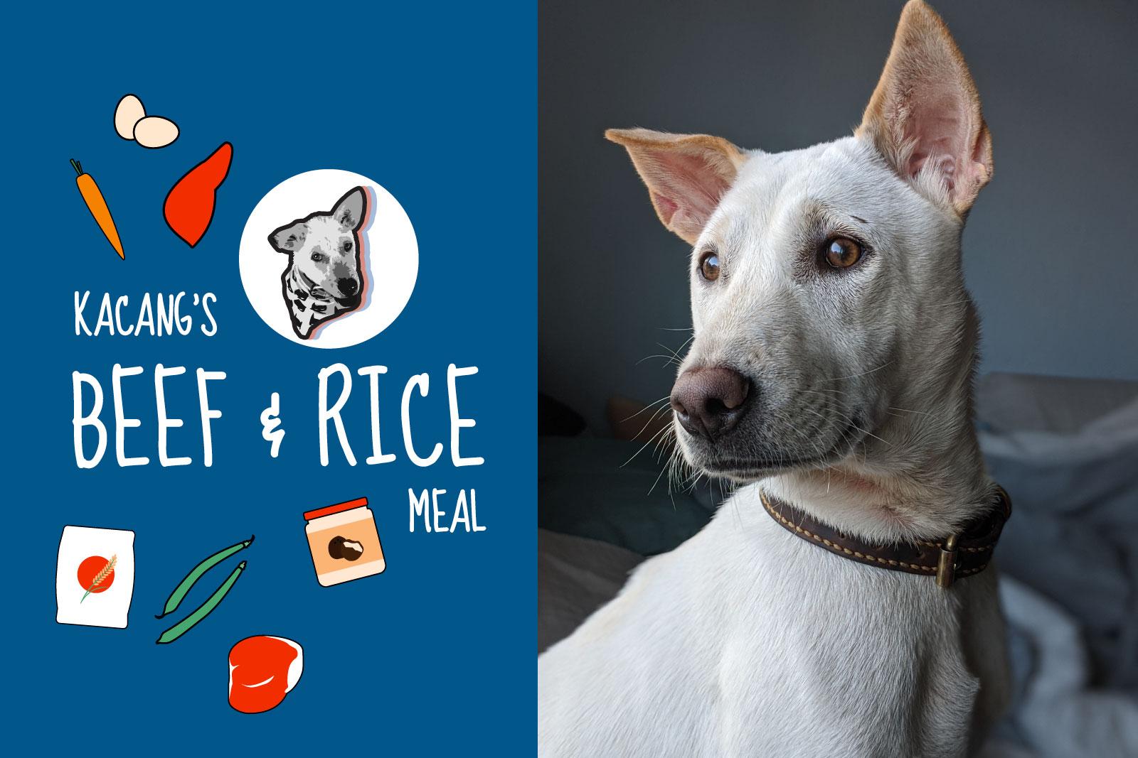 kacang's beef & rice recipe