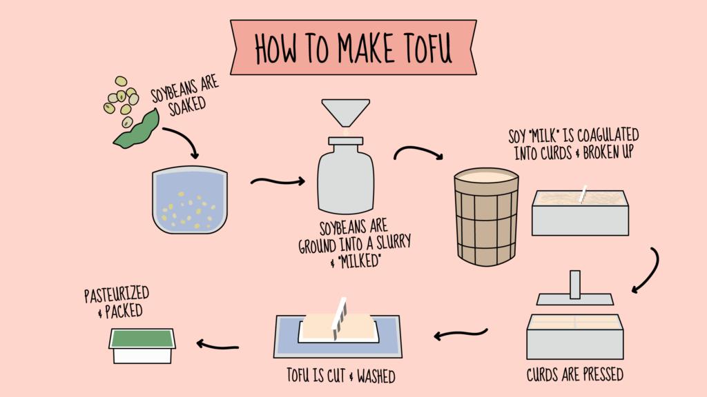 How to Make Tofu Infographic