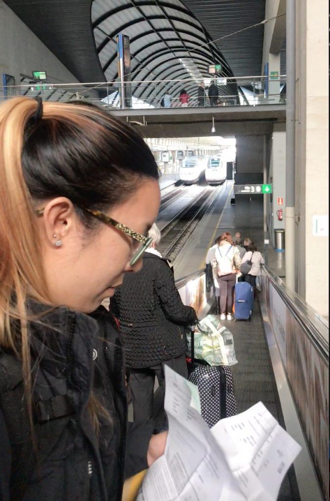 checking train tickets